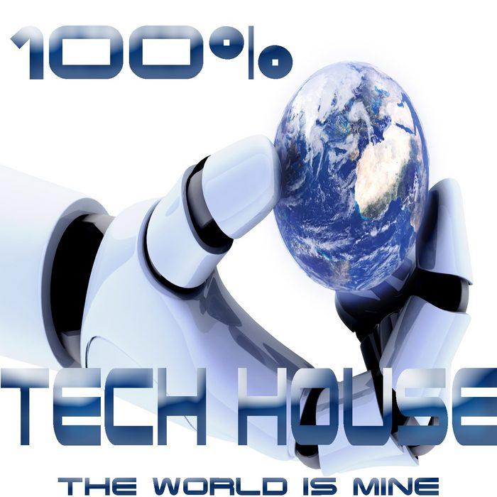100 Tech House The World Is Mine (Analogue Journey Into Techno Electro Minimalistix)
