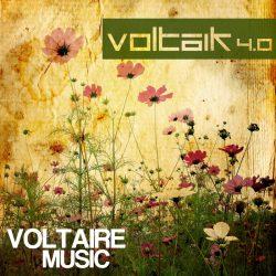 Voltaik 4.0